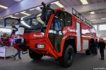 vf_magirus_dragon_28129.jpg