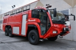 vf_magirus_dragon_2_281029.jpg